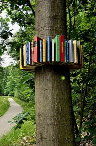 Biblioboom