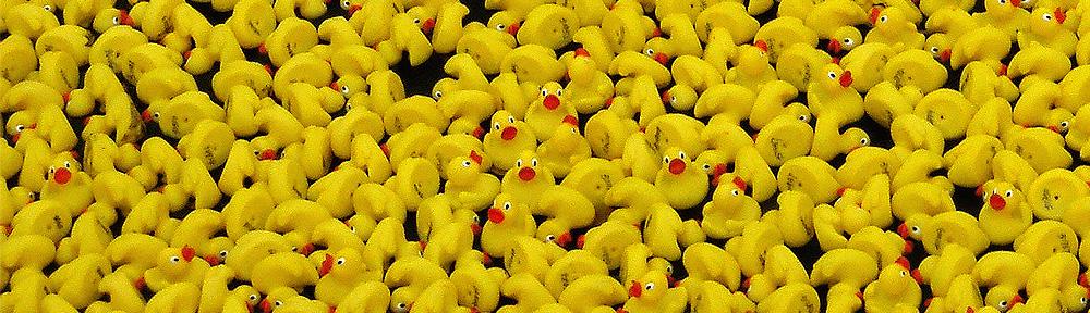 Great British Duckrace 2007