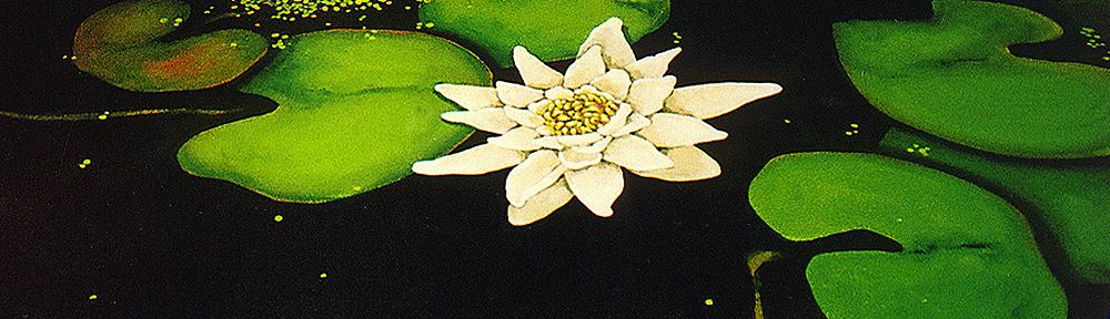 vloerschildering, waterlelie