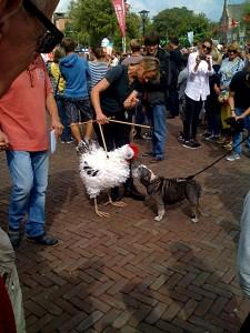 kiptok&hond1